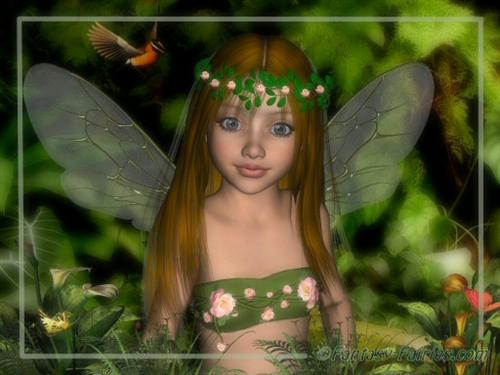 What is a fairy