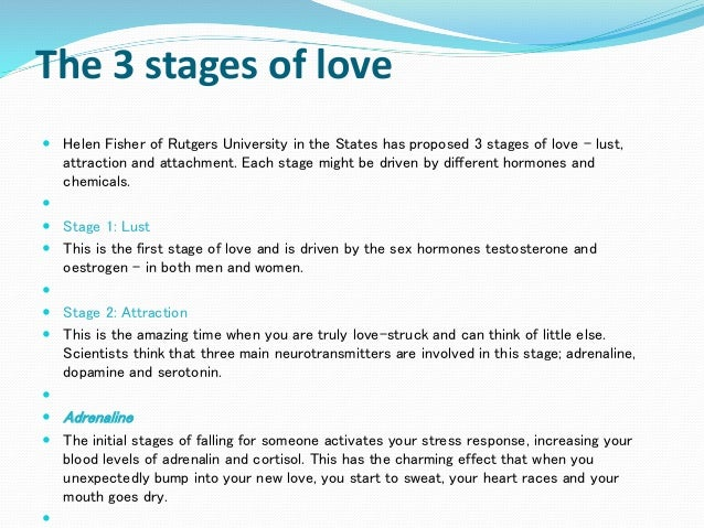 Stages of attraction for a man
