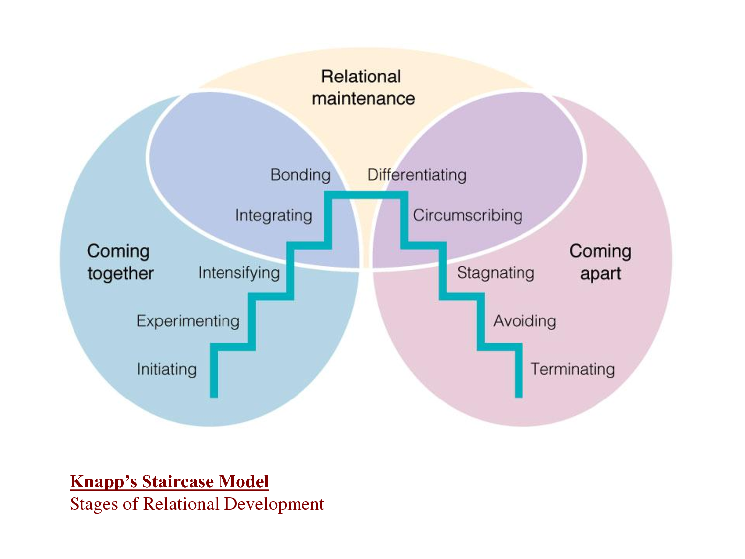 Stages of relationship development