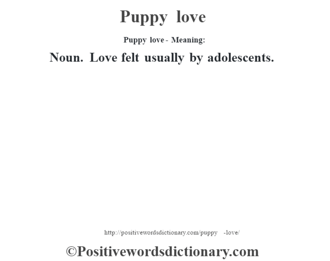 Definition of puppy love
