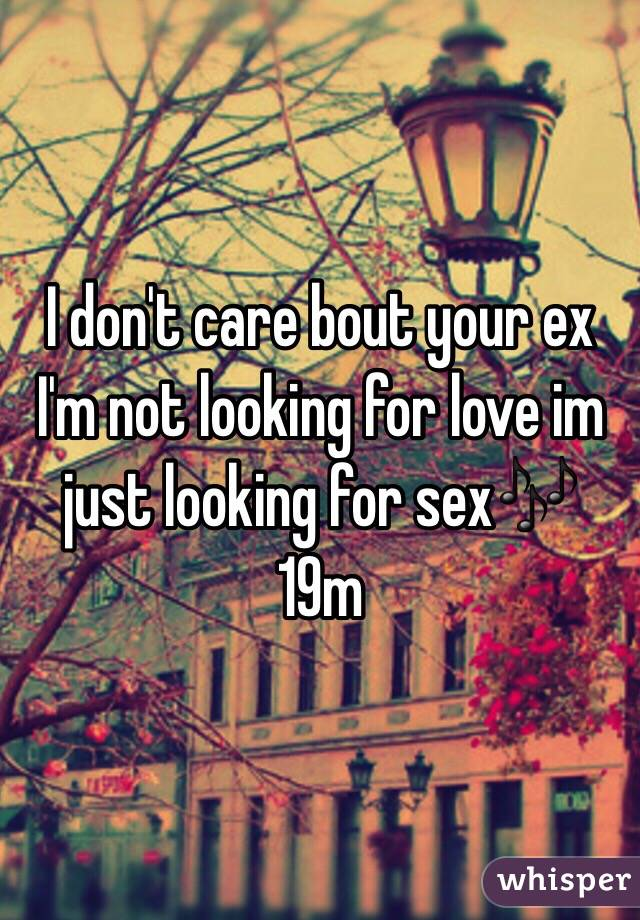 Im not looking for love